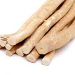 miswak sticks 150x150 Benefits Of Using the Miswak (Chewing Stick)
